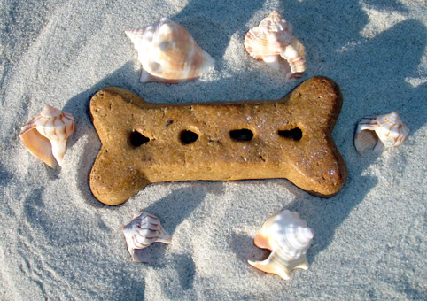 dog bone in sand