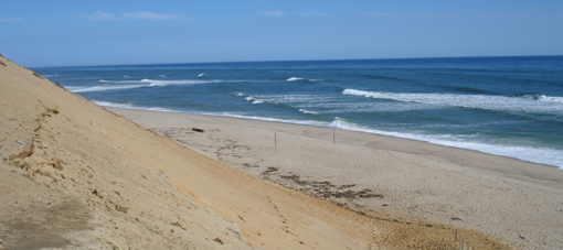 cahoon hollow cape cod